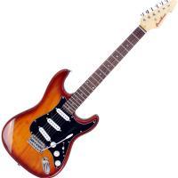Instrument Guitar Electric