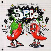Song Spice